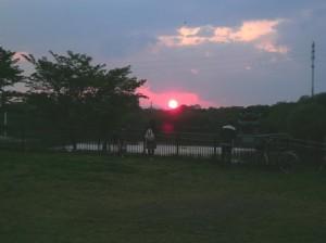 鶴見緑地からの夕日